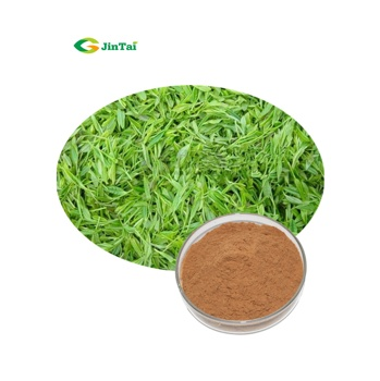 Green Tea Extract Powder Tea Polyphenols Green Tea Extract