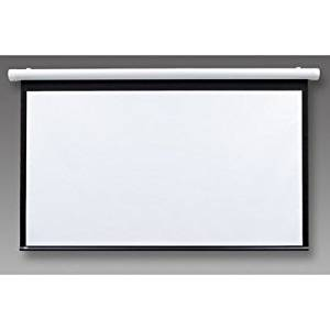 "Salara/Series M Contrast Radiant Electric Projection Screen Size: 60"" x 60"""