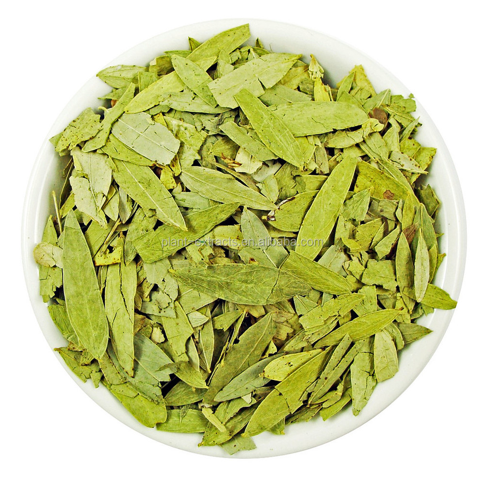 how to make senna leaf tea