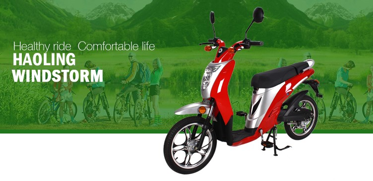 WINDSTORM1 pedal electric mobility e scooter 500W