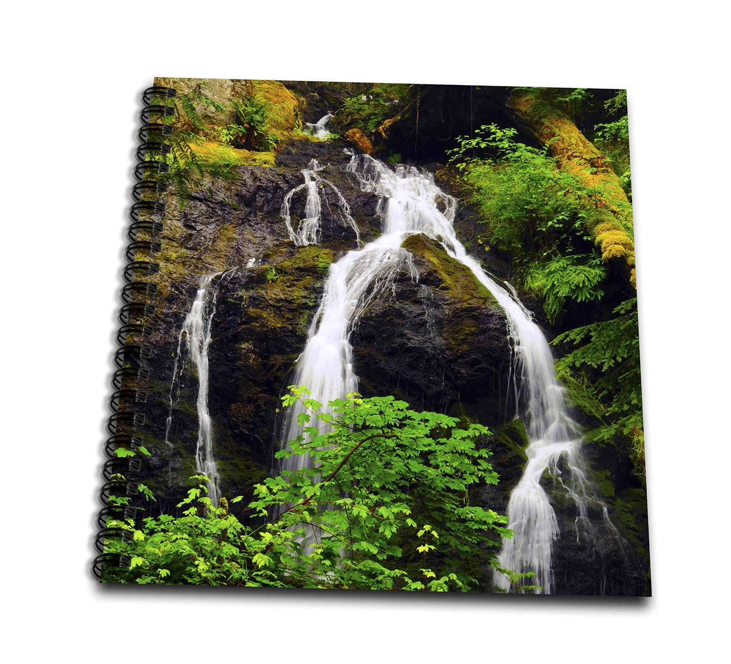 Danita Delimont - Waterfalls - Cascade Waterfalls, Orcas Island, Washington, USA - US48 MHE0023 - Michel Hersen - Memory Book 12 x 12 inch (db_148367_2)