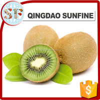 Import frozen dried kiwi fruit