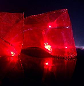 Fantado 30 LED Red Organza Ribbon Light, 8.5 FT Battery Operated by PaperLanternStore