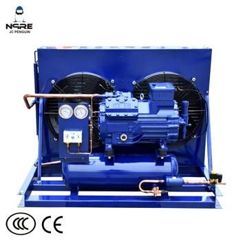 10HP Cold room condensing unit or compressor for chiller