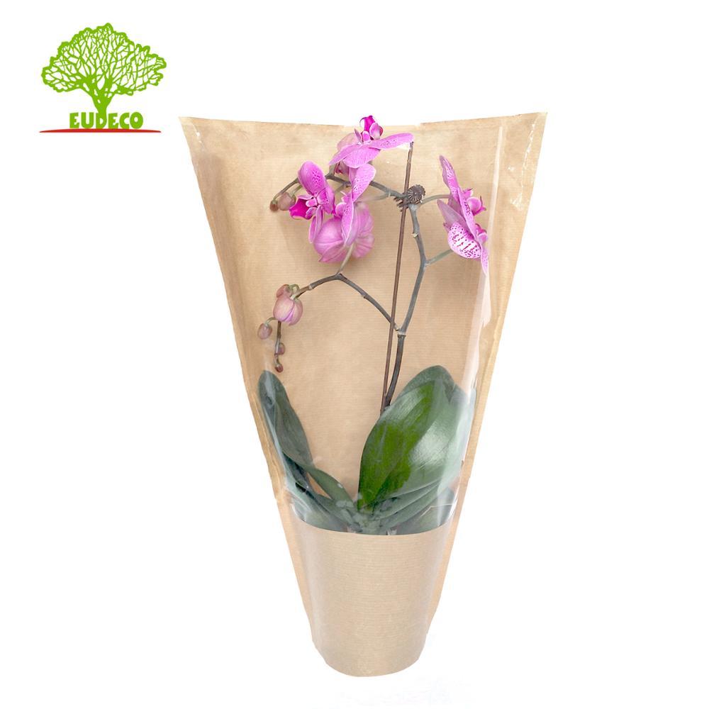 2/3 Katmanlar Çiçek Kraft Kağıt Torba Kesip Kolu Ile Özel Baskılı Plastik Torba Selefon Çin Tedarikçisi