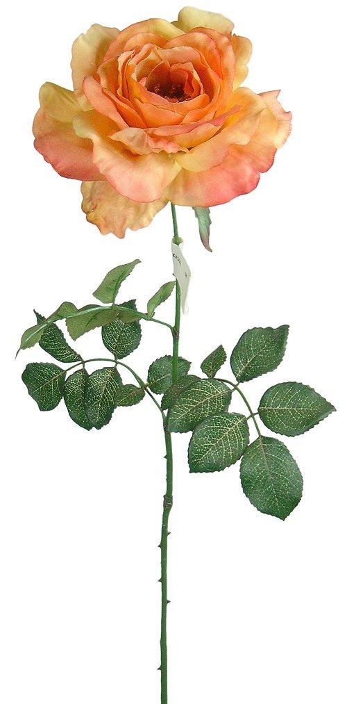 Buy Beautiful Single Stem France Rose High Simulation Acura