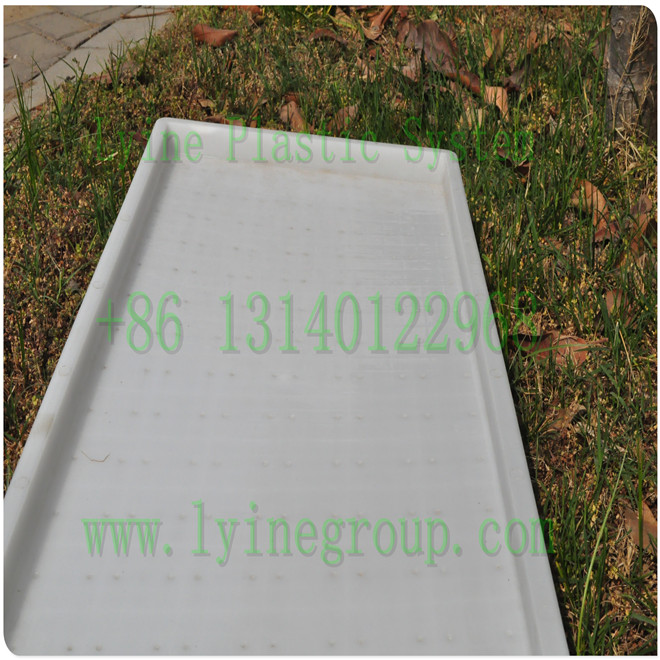 Plastic Round Rice Seed Sprouting Tray / Rice Seedling Tray