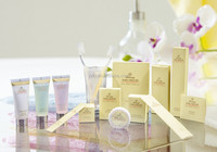 Hotel Personal Bodycare kit/Hotel makeup set/china factory natural hotel amenities