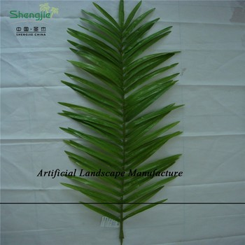 Sjzjn 419 Different Type And Colour High Quality Palm Tree Leaves ...