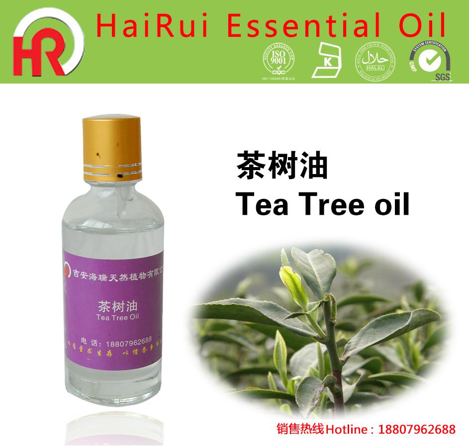 Saç Bakımı için Çay Ağacı Yağı