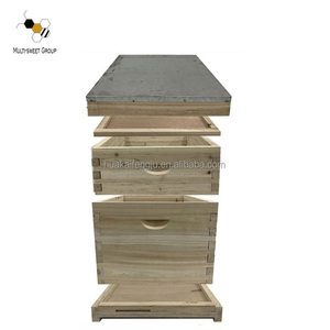 2 layer popular dadant beehive beekeeping equipment