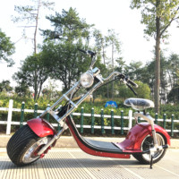 Europe warehouse to door new style fashion travel electric scooter with luggage trolley bag