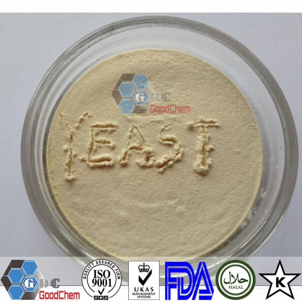High Quality Yeast Extract Powder Price