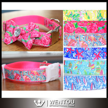 Unique Nylon Lilly Inspred Dog Collar