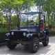 Strong 2000w 3000w mini electric jeep for adult