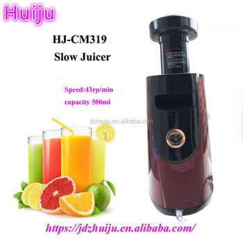 high quality CE approved hot items gifts multifunctional slow juicer HJ-CM319