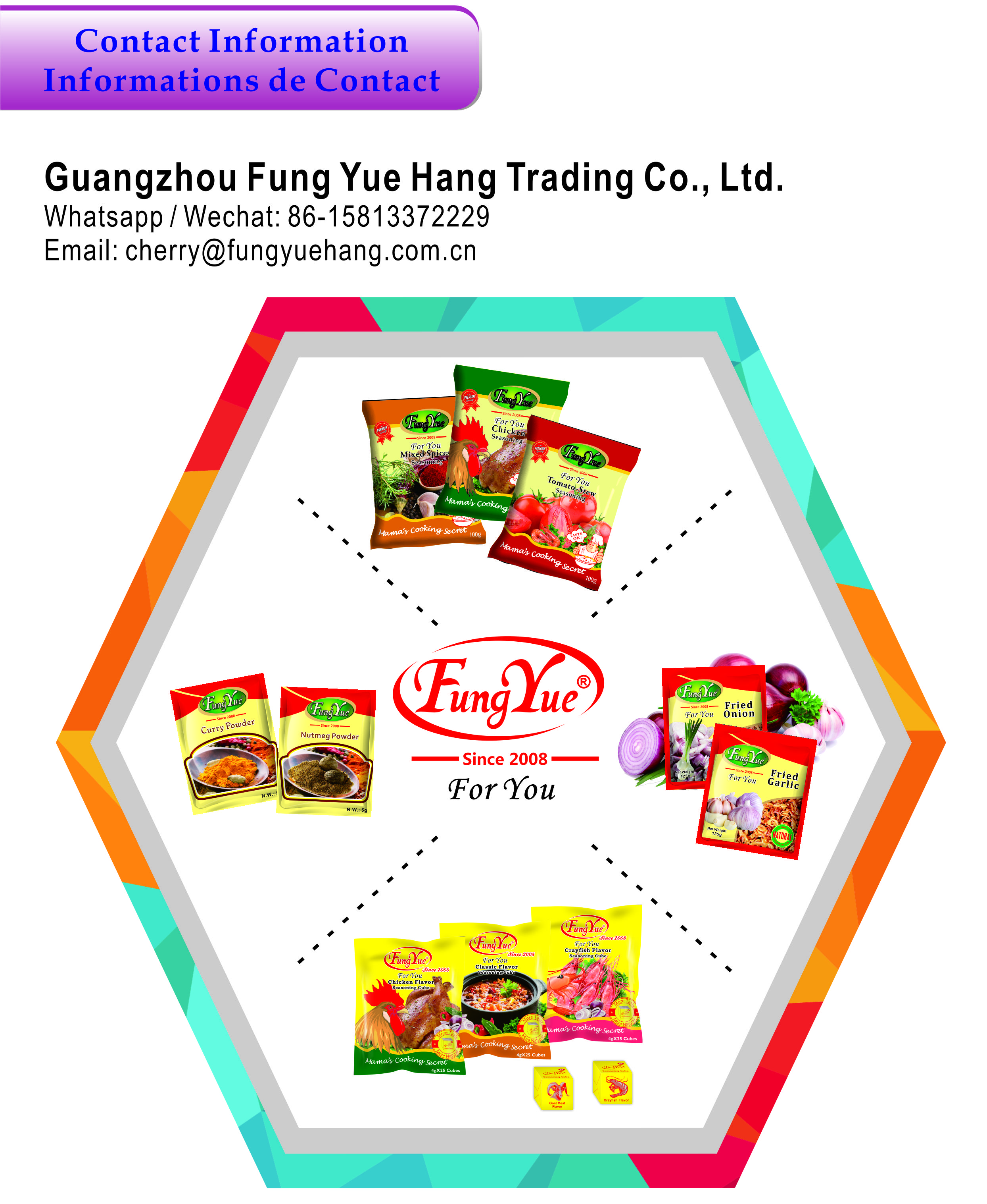 Family Cook 4g bouillon cubes stock beef flavor cubes good price for Africa Market