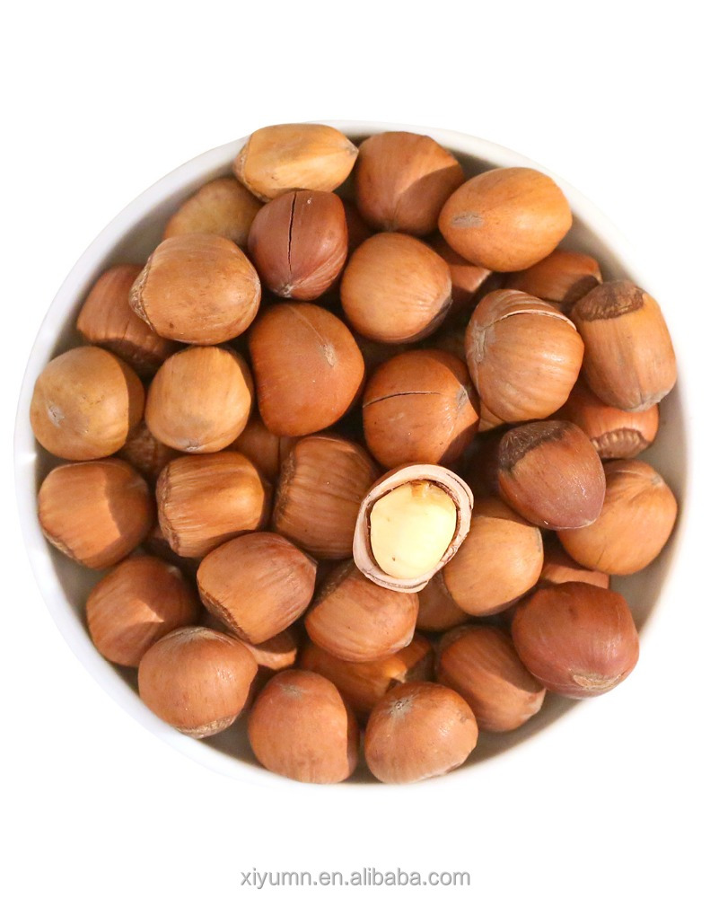 Hazelnuts in shell, nuts in shell, organic nuts