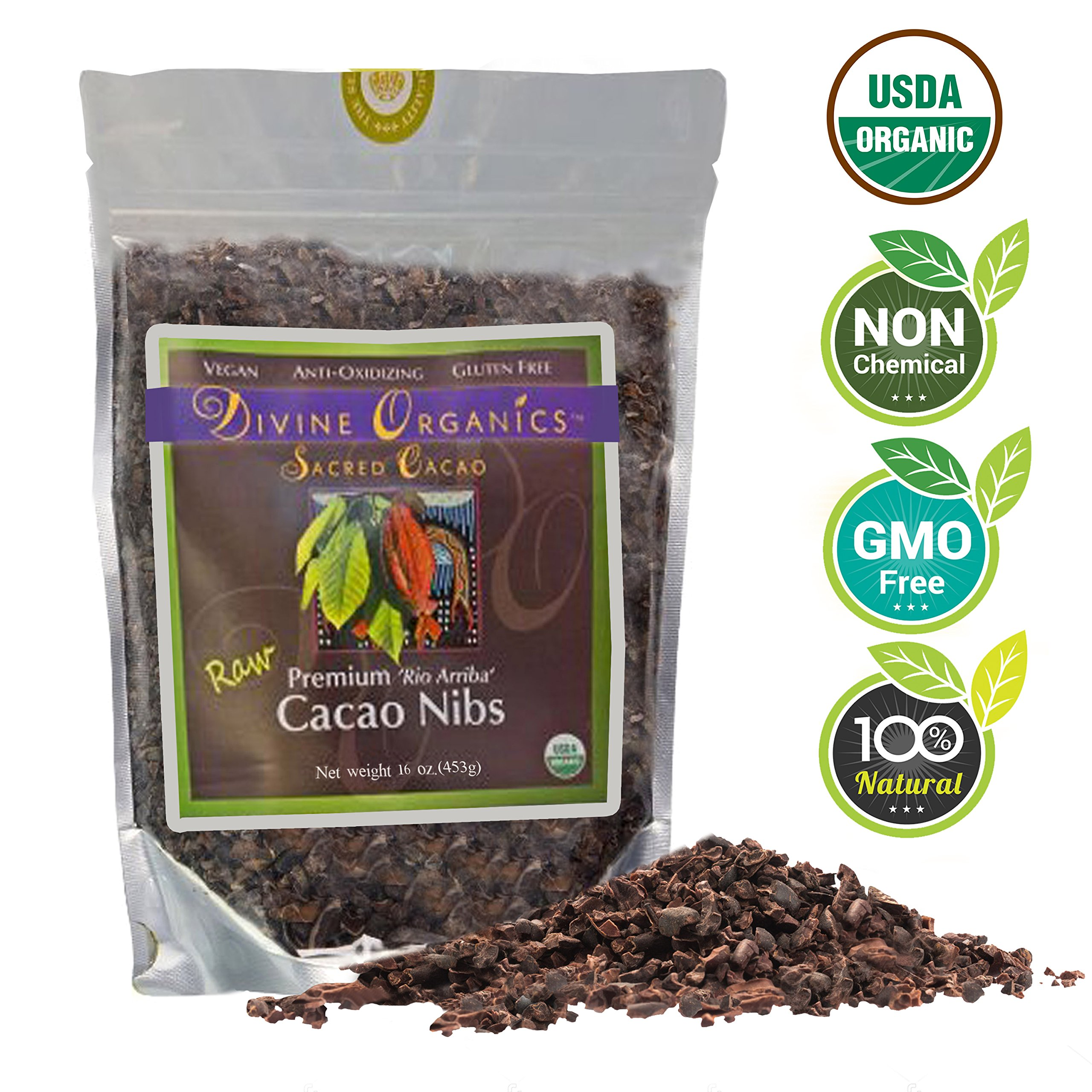Divine Organics Raw Cacao/Cocoa Nibs - Certified Organic - Premium Rio Arriba - Smoothies, Baking, Snacks, Salads, Trail Mixes - Chocolate Chips Substitute - Rich in Magnesium (16oz)
