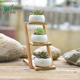 Set of 3 Modern Mini bamboo Flower Plant pots shelf with white Containers holder