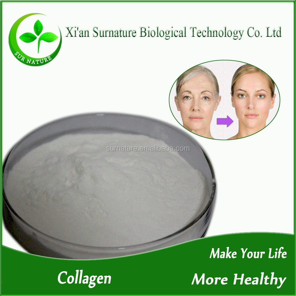 Hot Selling Nutrition Supplements Bulk Collagen Powder