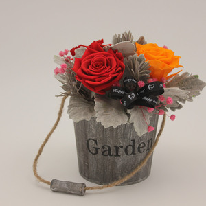 Holiday Gift How to Preserve Flowers in a Jar for Best Friend Birthday Wishes