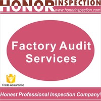 audit service, company audits, auditing and assurance services