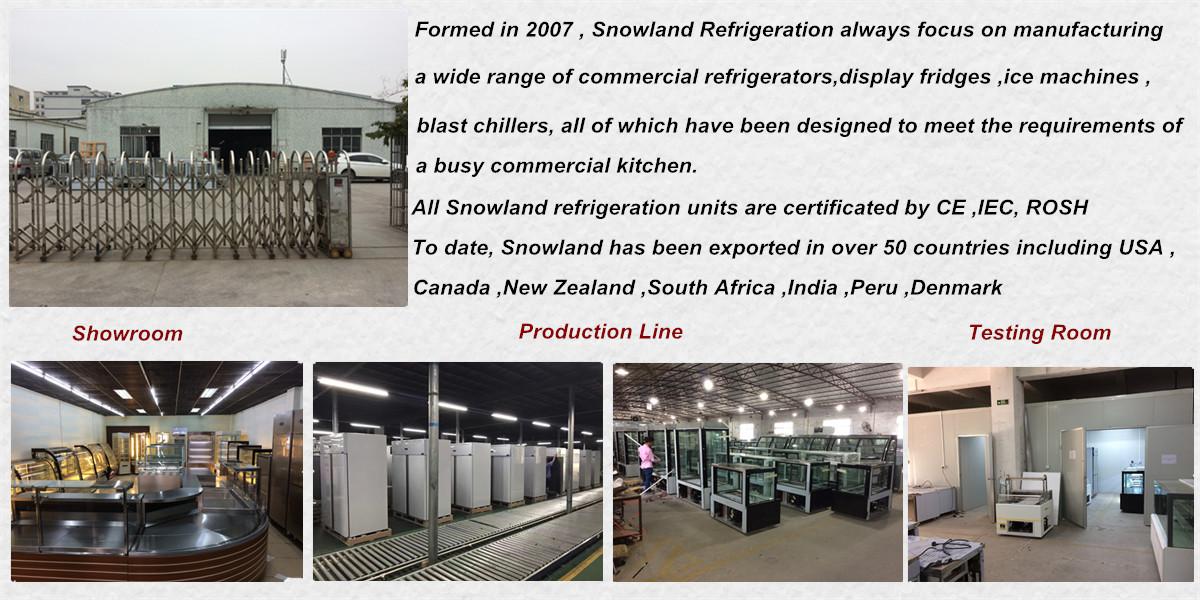 Guangzhou Snowland Refrigeration Equipment Co , Ltd  - Cake