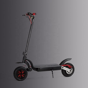 Two Wheel 1000W 48V 10inch Dual Motor Folded Electric Scooter with Anti-slip Handle Grip