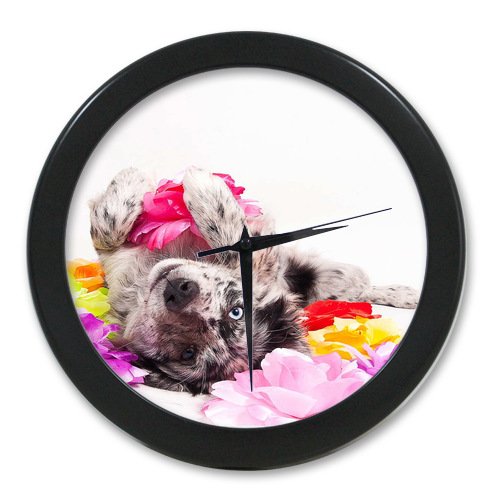 Original <font><b>Home</b></font> <font><b>Decoration</b></font> Customized Cute dog <font><b>Elegant</b></font> Wall Clock Modern Design Watch Wall Free Shipping #-LQ013