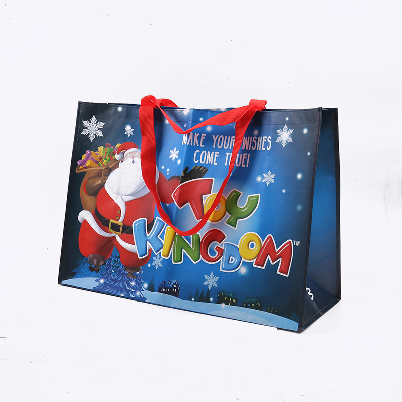 OEM Promotional christmas clear vinyl bag
