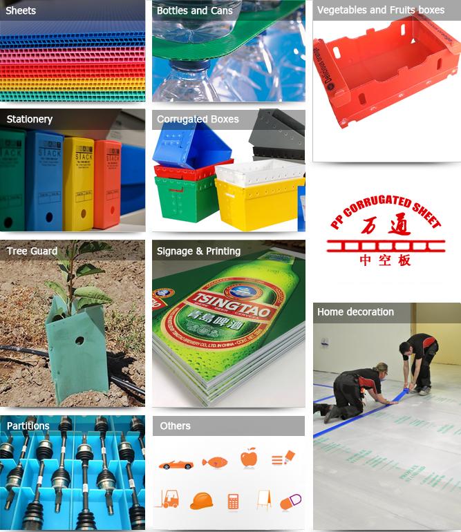 Zwart ESD Gegolfd Plastic Verpakking Dozen