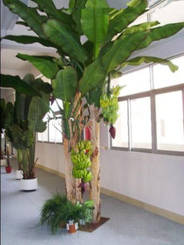 plant tree type large leaf artificial plants artificial banana ...