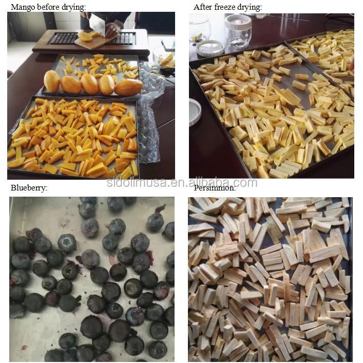 freeze dried fruit