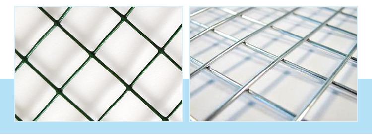 """Di colore verde 1/2 """"x 1/2"""" pvc rivestito saldati wire mesh sri lanka"""