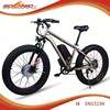 best seller electric bike economic bicycle prices
