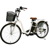 City Star Bike 250W Electric Bicycle