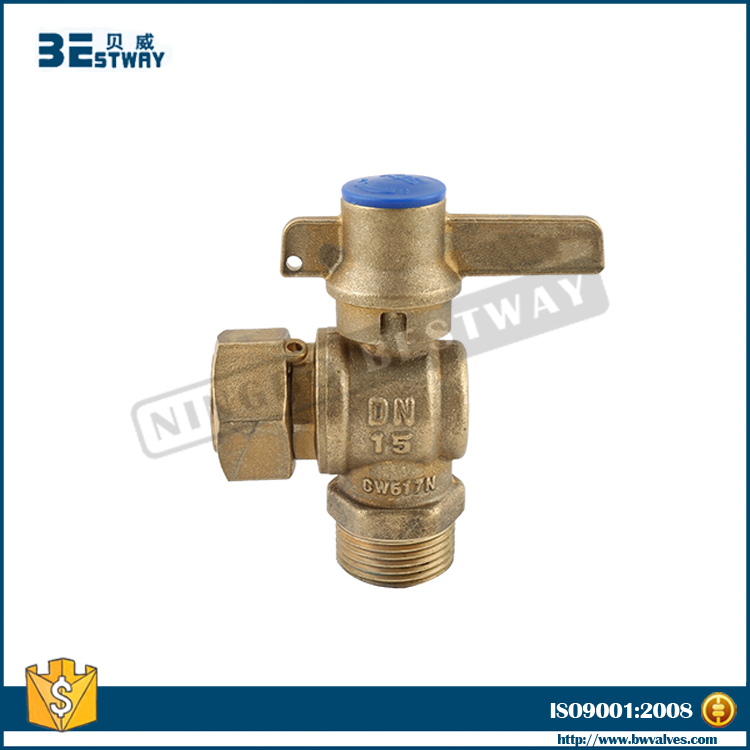 BW-L38 with check valve 4.jpg