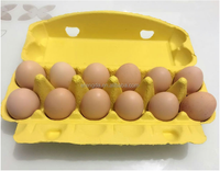 Paper Moled Eco Friendly 12 Cells Quail Egg Cartons For Sale