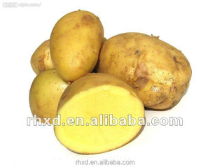 2018 Wholesale Price For Large Yellow Potato