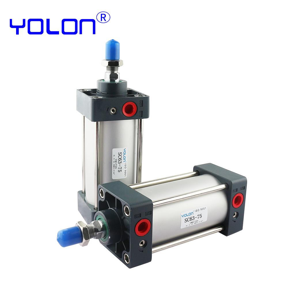 SC100X25 SC100X50 SC100X100 SC100X150 SC100X200 SC100X250 SC100X300 double Acting Standard Pneumatic Air Cylinder