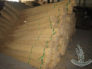 thatching roof material water reed for thatching