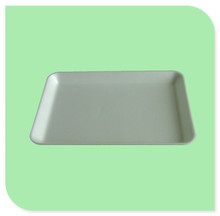 Hot selling high quality foam tray container