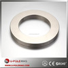 Hot Sale NdFeB Rare Earth Magnet Permanent Radial Ring Magnet 50M
