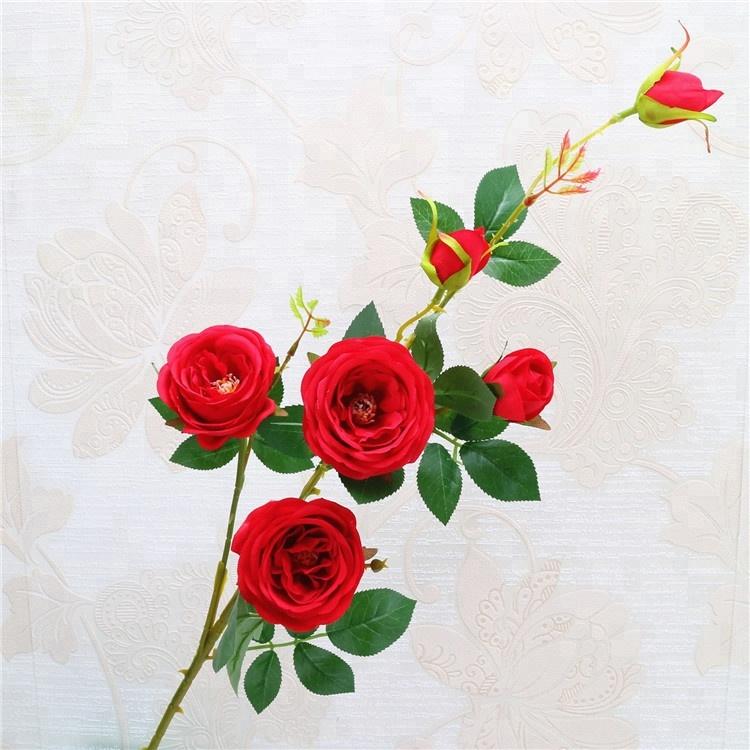 Розы цветы опт киев камелия