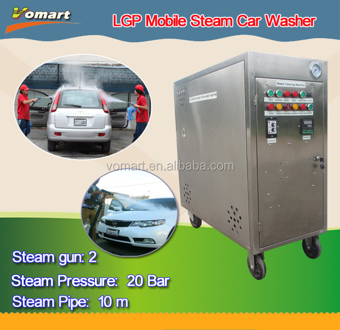 hot LPG 20bar two steam gun mobile steam car wash machine/steam v steam
