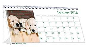 """House of Doolittle 2016 Monthly Desktop Tent Calendar, 8.5"""" x 4.5"""", Puppies (HOD3659-16) by House of Doolittle"""