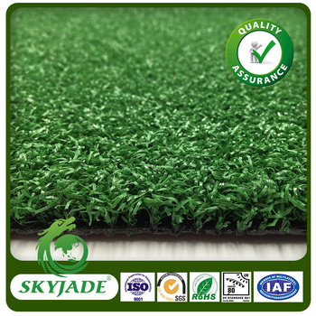 Curly Durable Fake Grass Carpet Outdoor And Indoor Mini Golf ...