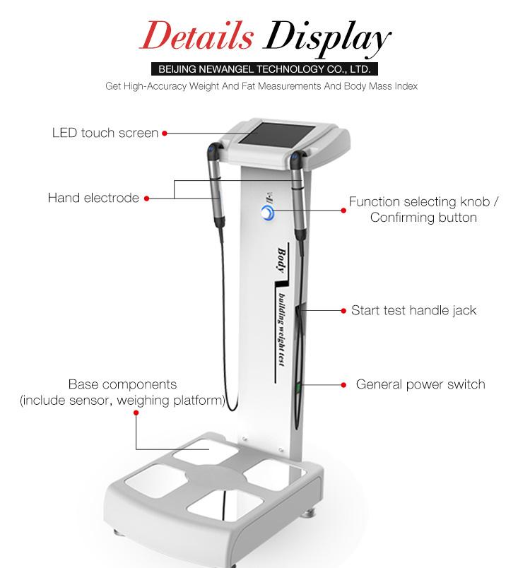 Best price body fat analyzer body composition analysis machine for gym