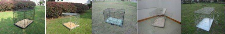 Gaiola de pássaro com bandeja removível de plástico e uma porta/gaiola redonda com gancho de suspensão